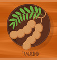 tamarind flat design icon vector image
