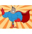 African American Super Hero vector image vector image