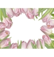 Flowers background with tulips EPS 10 vector image vector image