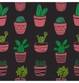 Hand drawn seamless pattern with Cacti vector image