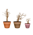 Three Abstract Isometric Brown Trees in Flower Pot vector image