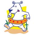Polar Bear Swimming vector image