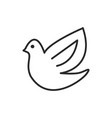 dovebird line icon sign on vector image