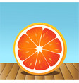 summer grapefruit vector image