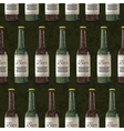 Bottles of light and dark beer on green background vector image