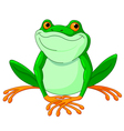 Frog vector image