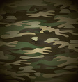 military camouflage vector image