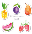 Watercolor fruit stickers set vector image