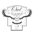 Owl engraving label logo vector image