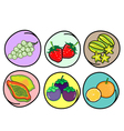 Set of Fresh Fruits on Round Background vector image