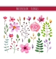 Watercolor floral collection vector image