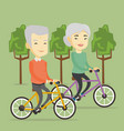 senior couple riding on bicycles in the park vector image