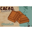 Vintage Chocolate poster design Chocolate pieces vector image