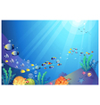Underwater Sea life Background vector image