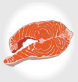 steak of red fish salmon for vector image