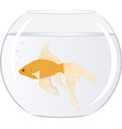 goldfish in the bowl with bubbles vector image