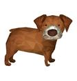 dog animal icon vector image