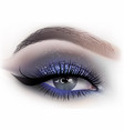 fashion woman eye makeup vector image