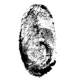 fingerprint 01 vector image vector image
