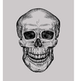 Human skull Hand drawn Jolly Roger Sketch death vector image