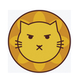 Angry cute lion vector image