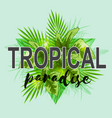 background with green palm leaves vector image