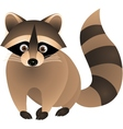 raccoon cartoon vector image