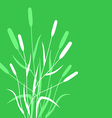 grass back vector image