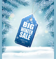 big christmas sale on winter background with vector image
