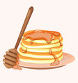 pancakes with berries and honey icon cartoon vector image