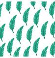 tropical leaf summer pattern vector image