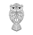 owl bird isolated with clock face on stomach on vector image