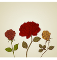 Abstract background beautiful retro roses vector image vector image