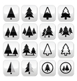 Pine tree buttons set vector image vector image