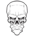 decrepit evil cartoon skull vector image