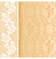 Lace beige square vector image