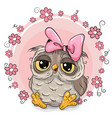 greeting card owl with flowers vector image