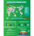 INFOGRAPHIC DEMOGRAPHIC MODERN TOYS STYLE vector image vector image