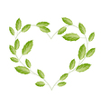 Green Vine Leaves in A Beautiful Heart Shape vector image
