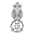owl bird sitting on sign with inscription queen of vector image