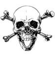Graphic human skull with crossed bones vector image