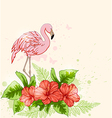 Red flowers and pink flamingo vector image vector image
