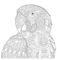 Zentangle stylized macaw vector image