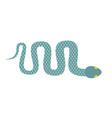 snake isolated cobra crawling on white background vector image