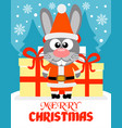merry christmas card with rabbit santa claus vector image