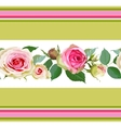 Seamless pattern with roses and stripes vector image