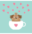 Shih Tzu dog sitting in white cup with heart Cute vector image