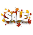 Sale background with maple leaves vector image