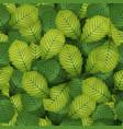 seamless spring hazel leaves vector image vector image