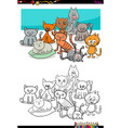 cats characters group coloring book vector image